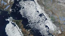 Georgian Bay Ice Watch, April 19 2014, NOAA Modis 205m