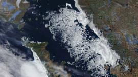 Georgian Bay Ice Watch, April 24 2014, NOAA MODIS 250m
