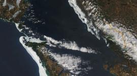 Georgian Bay Ice Watch, April 24 2015, NOAA Modis True Colour 250m