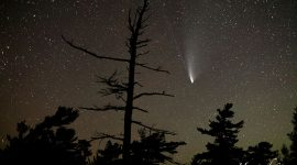 Comet Neowise and silhouetted tree, Cross Channel, French River, Bad River, Georgian Bay